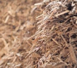 Entsorgtes Holz bei Rieger